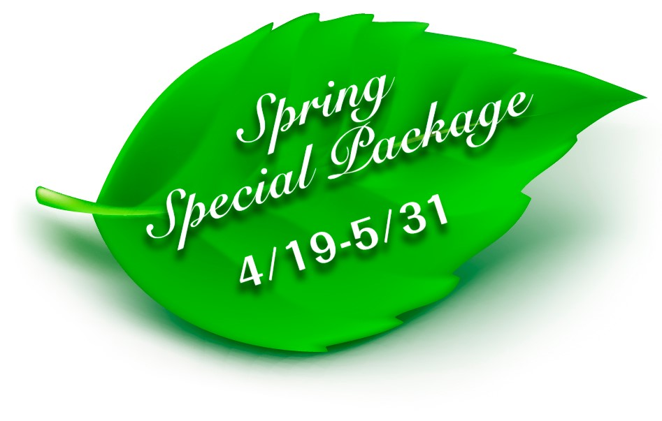 Spring Special Package